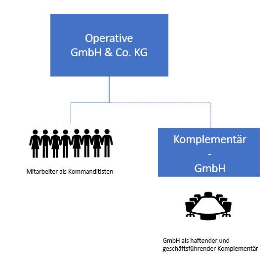 Mitarbeiterbeteiligungsmodelle: GmbH & Co.KG