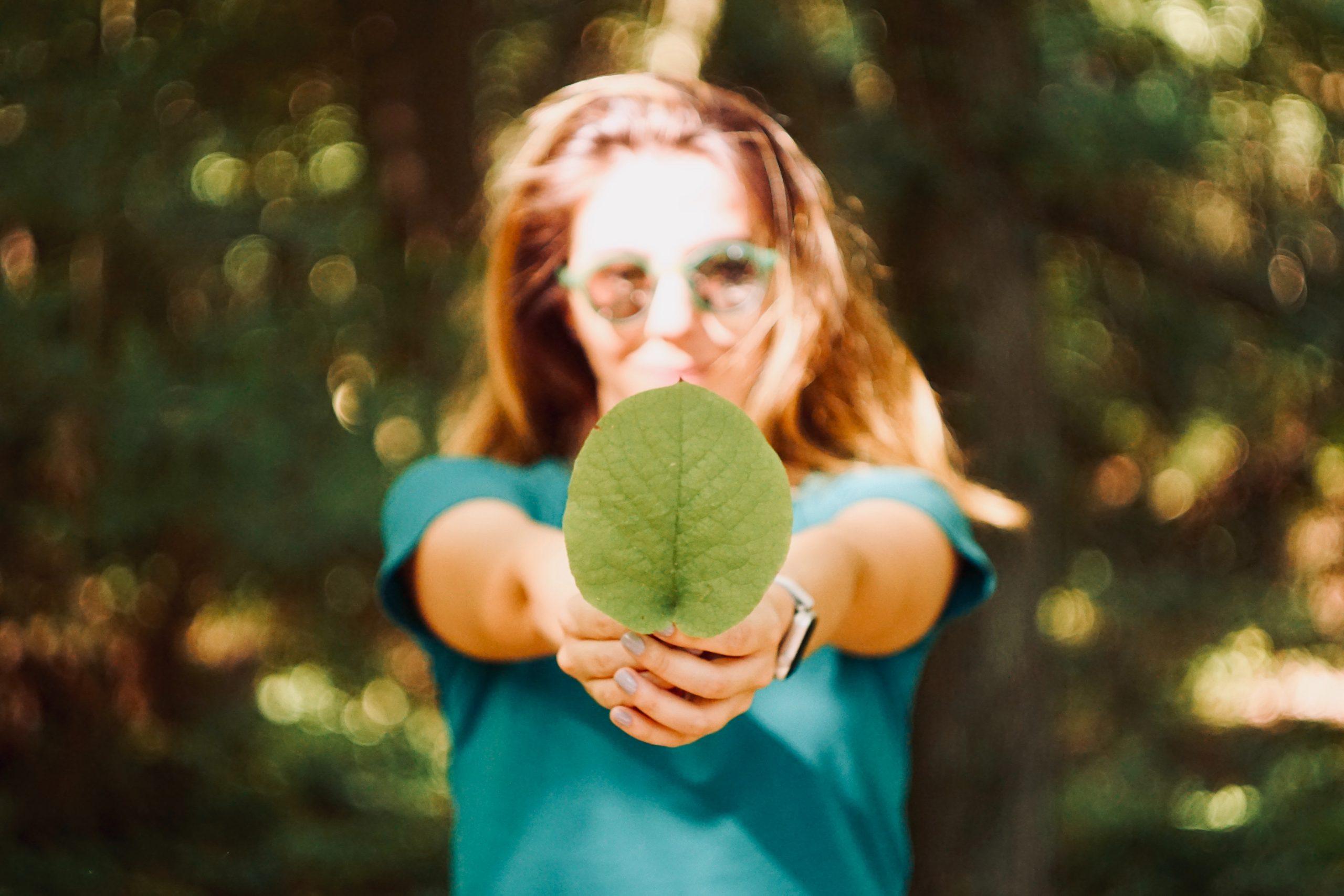 Read more about the article Nachhaltigkeit: Was ist eigentlich eine Wesentlichkeitsmatrix und wie hilft diese bei der strategischen Steuerung?
